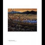 Hartland, Provence & Co. Kerry (2008)