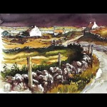 Co. Kerry - White Washed Cottages