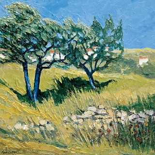 Provence - Olive Trees at Menerbes